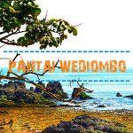 Pantai Wediombo Yogyakarta