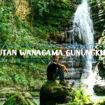 Hutan Wanagama Gunungkidul